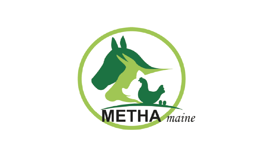 Logo Methamaine