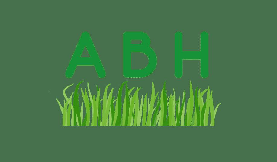 logo-abh